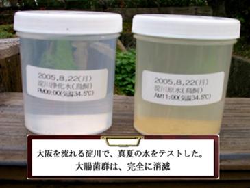 大阪を流れる淀川で、真夏の水をテストした。大腸菌群は、完全に消滅。